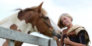 horseBanner-new