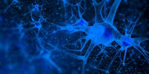 neuron-banner